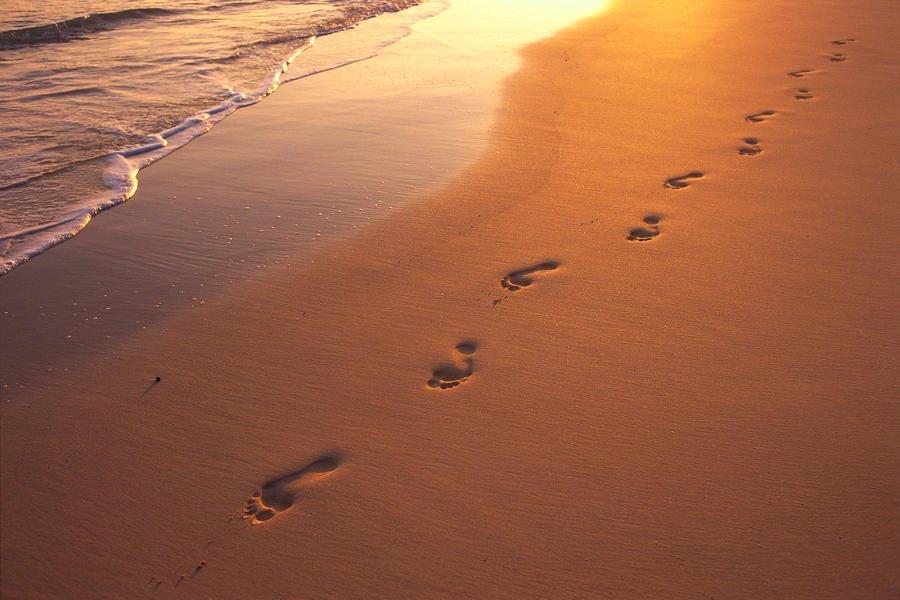 Emotional Footprints